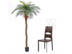 Umělá palma datlová Senegal (210cm)