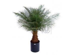 Umělá palma Datlová (Varianta 170cm)