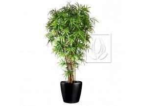 Umělý strom Bambus japonský (Varianta 180cm)