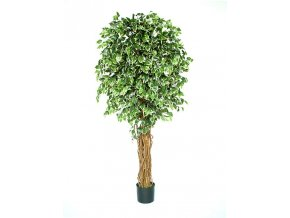 Umělý strom Fikus Exotica (180cm)
