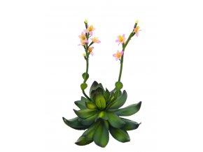 Umělá rostlina Stonerose (32cm) růžová
