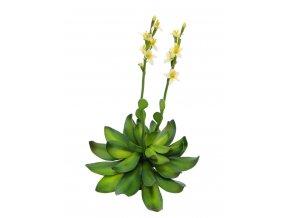 Umělá rostlina Stonerose (32cm) žlutá