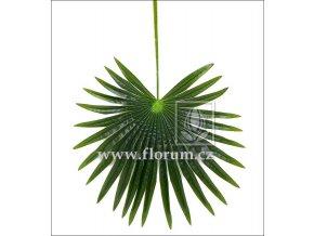 Umělý list palmový vějířovitý (85cm)