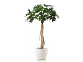 Umělá rostlina Philodendron Selloum (200cm)
