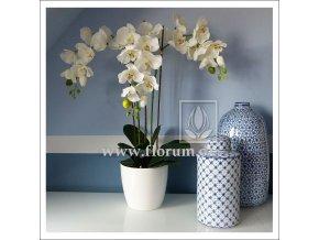 Umělá rostlina Orchidej Phalaen. (70cm)