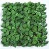57679 mat ficus ginseng uvr 50x50 cm green m017uvr