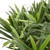 150407uv podocarpus bonsai x2 65 uv close up 2