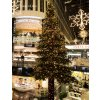 Pine Giant Tree instalace1