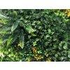 Vegetatie varen yellow detail
