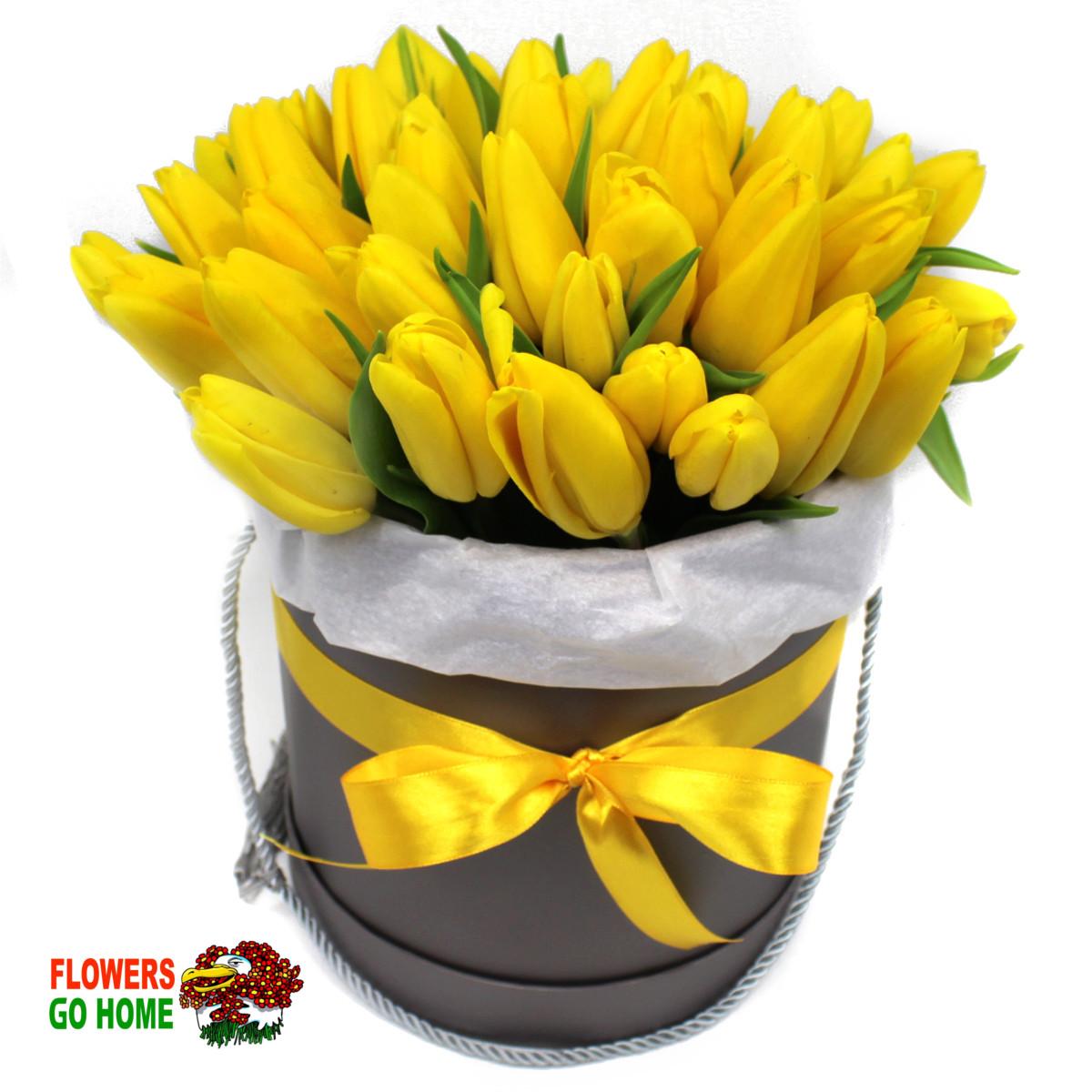 žluté tulipány box-logo