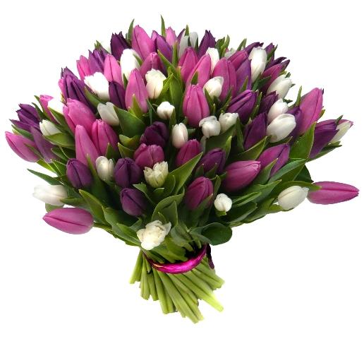 Tulipány volně svázané