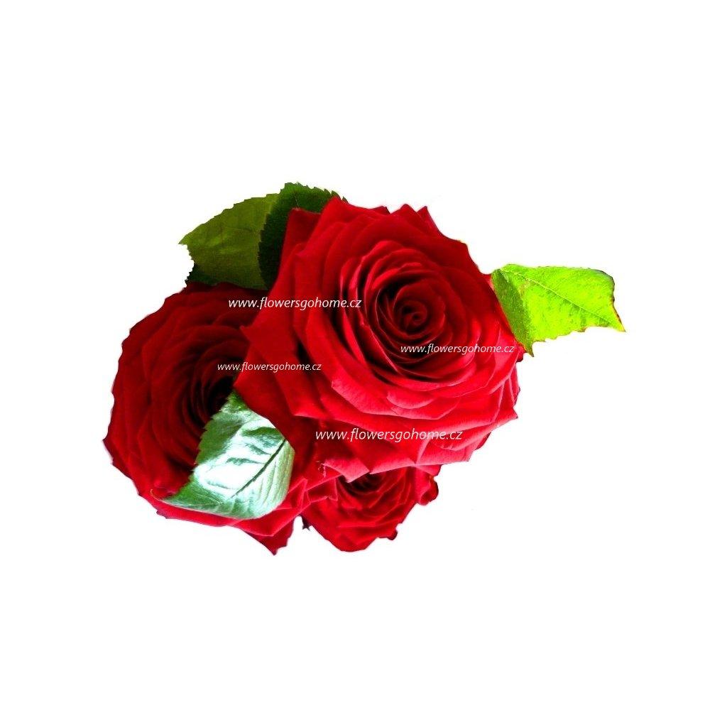 Rudé růže k Valentýnu
