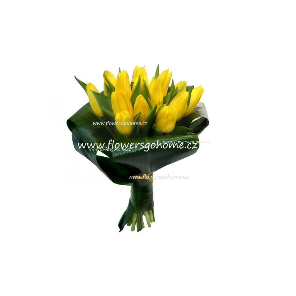 Tulipány žluté - žezlo