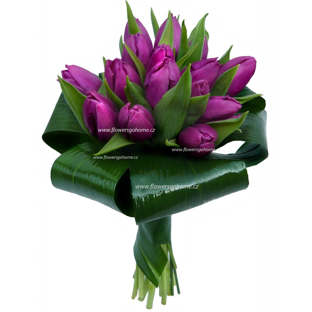 Kytice fialových tulipánů