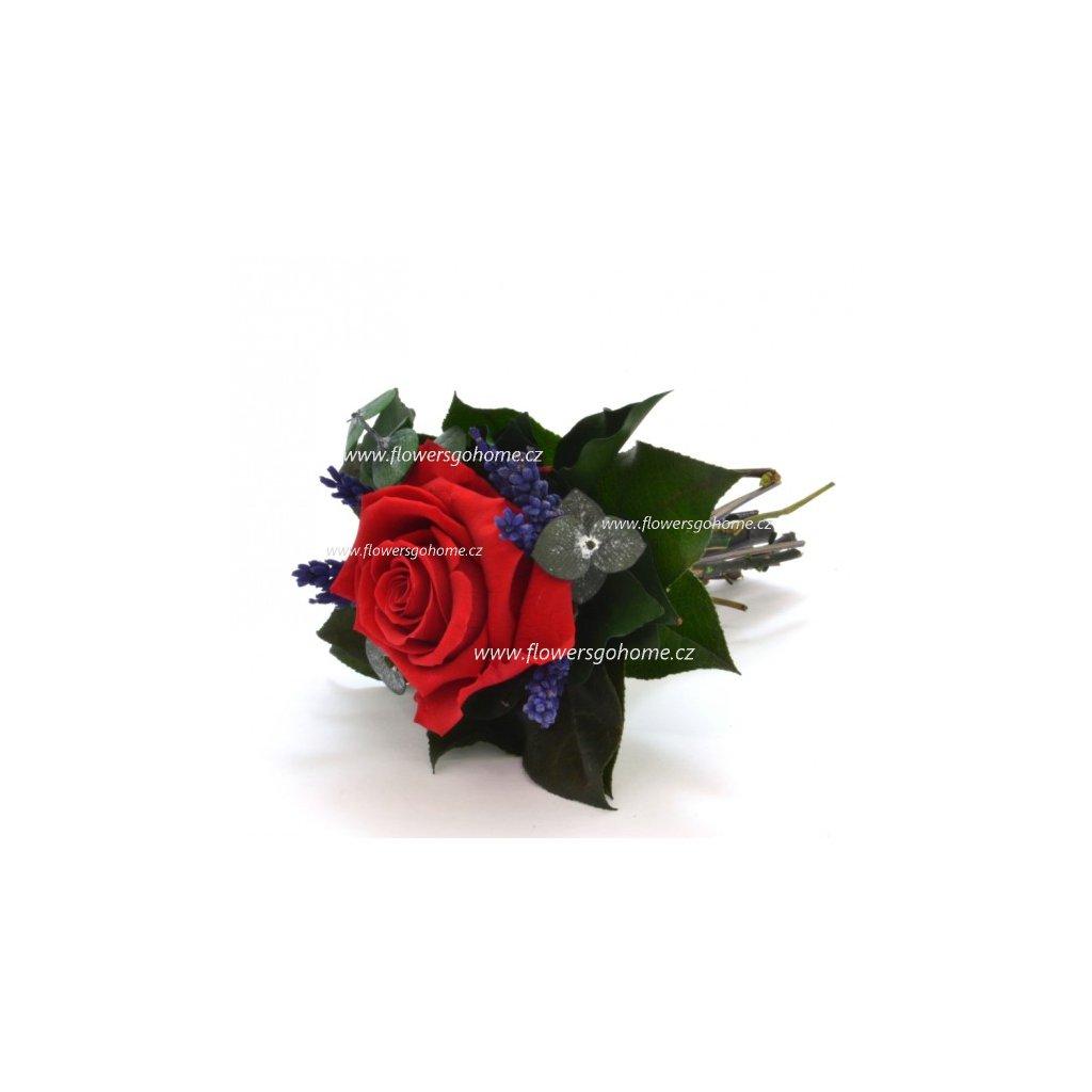 Stabilizovaná růže Lucy