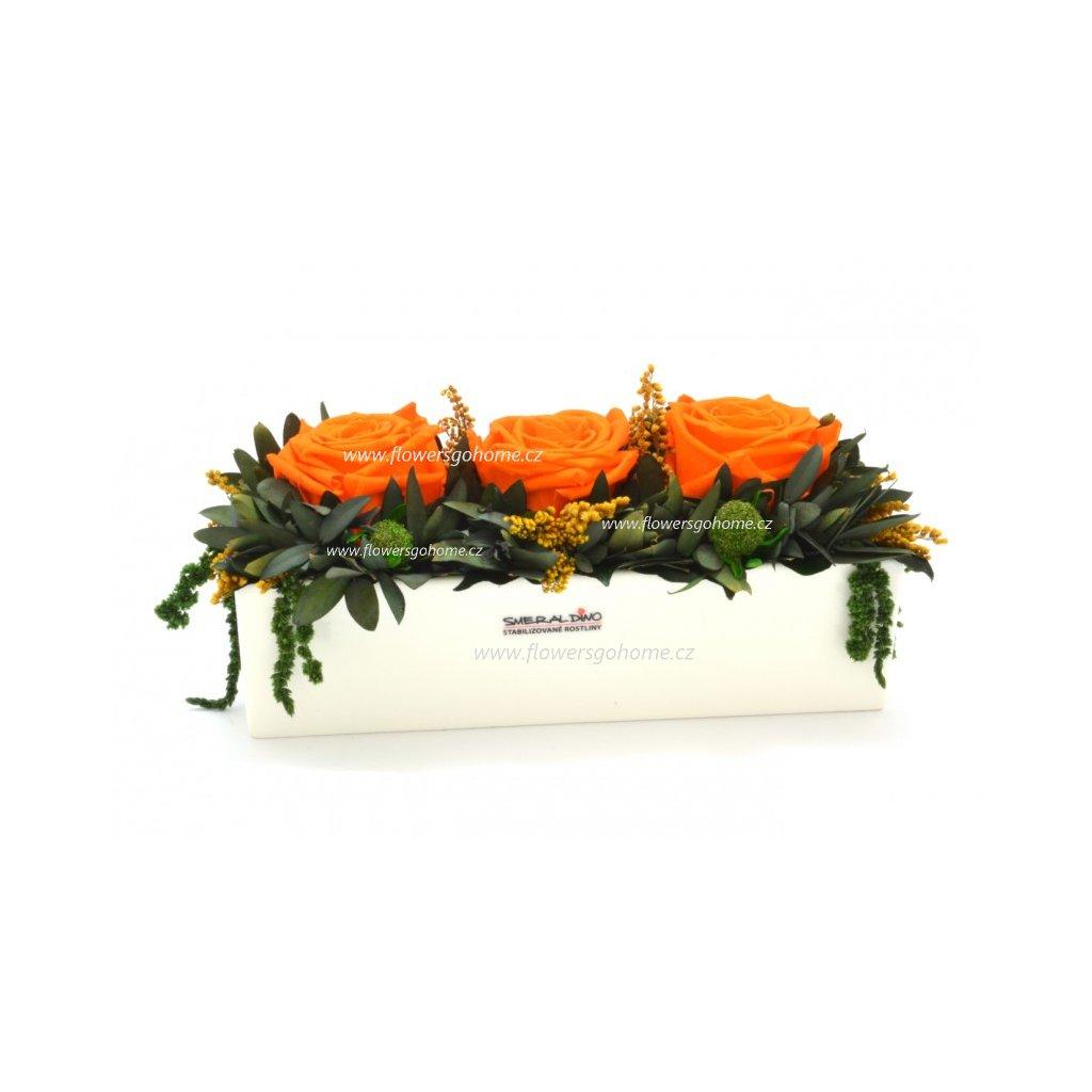 Elen Orange