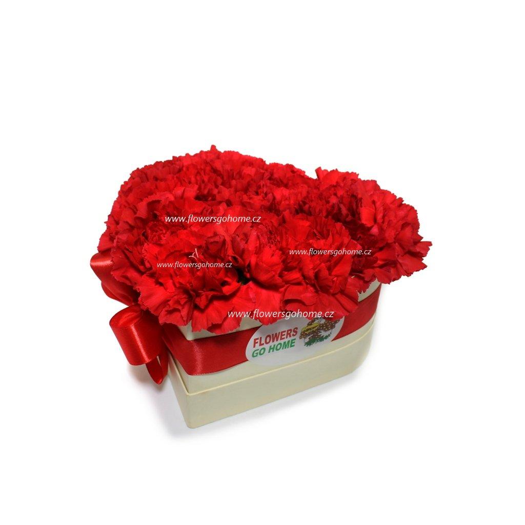 Rudé karafiáty srdce