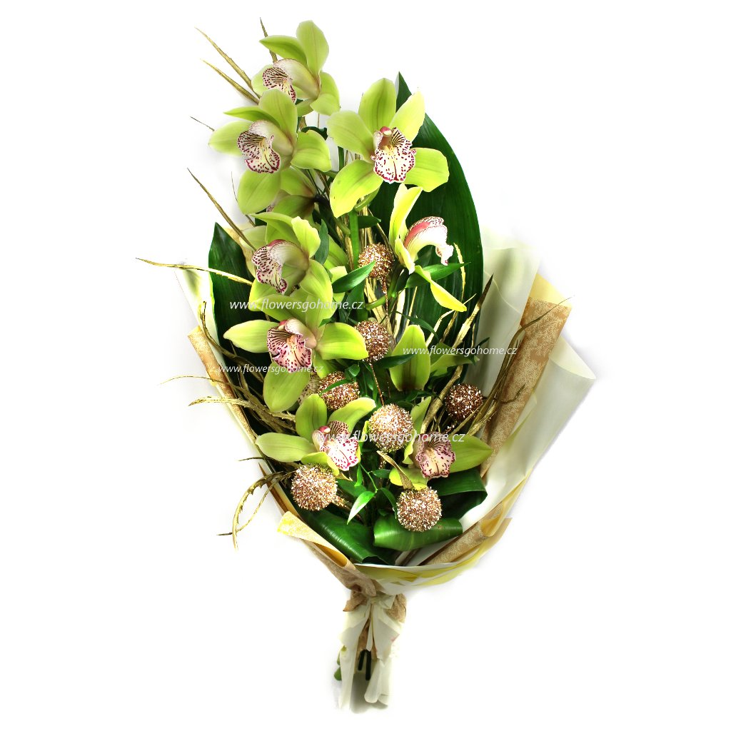 Vánoční květina z orchidejí