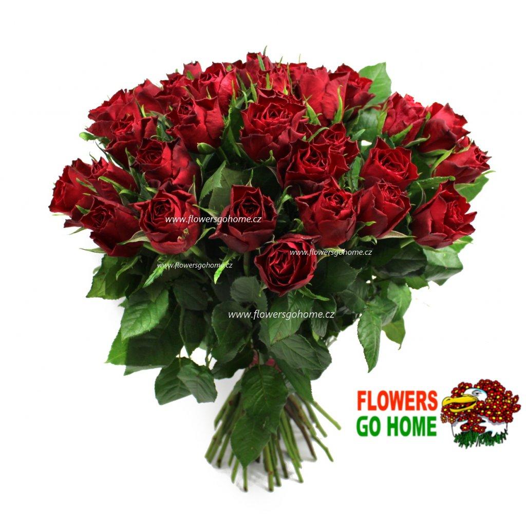 50 růží levně