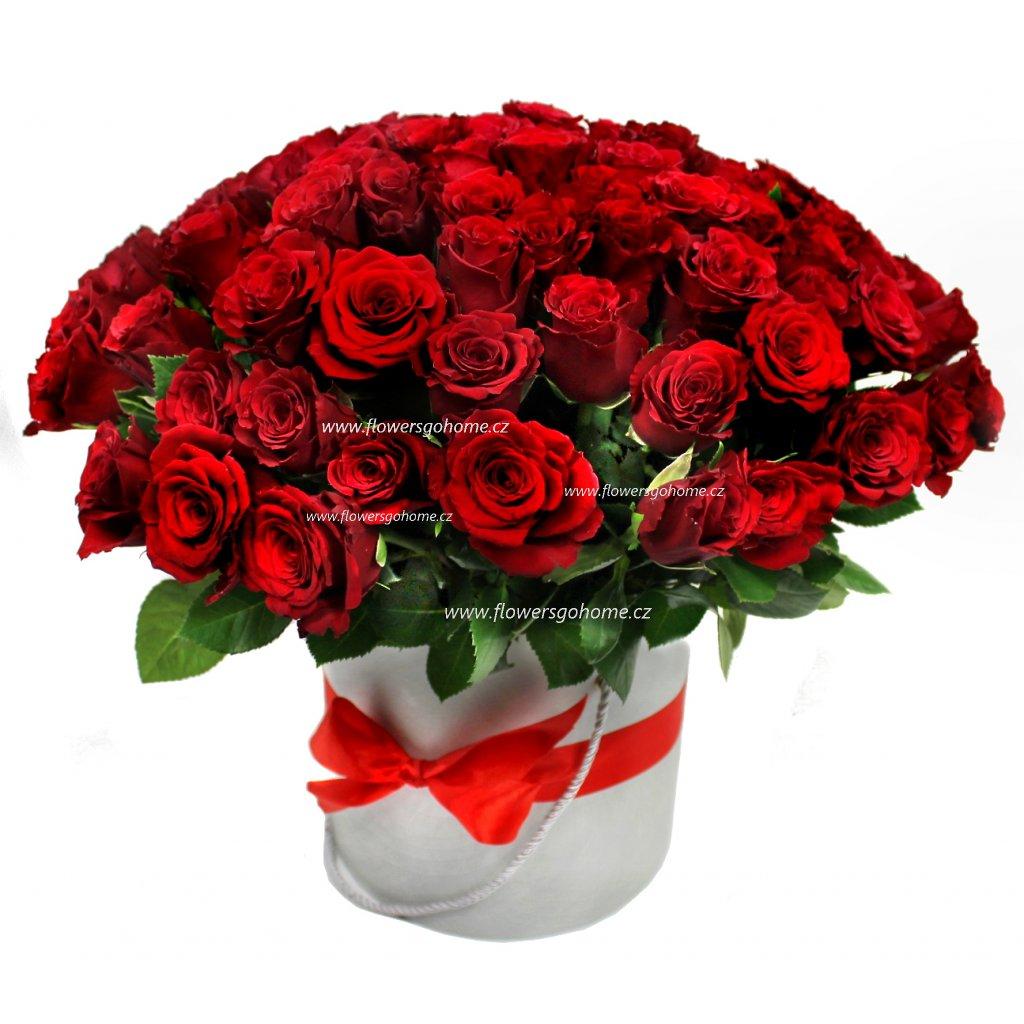 100 růží v boxu