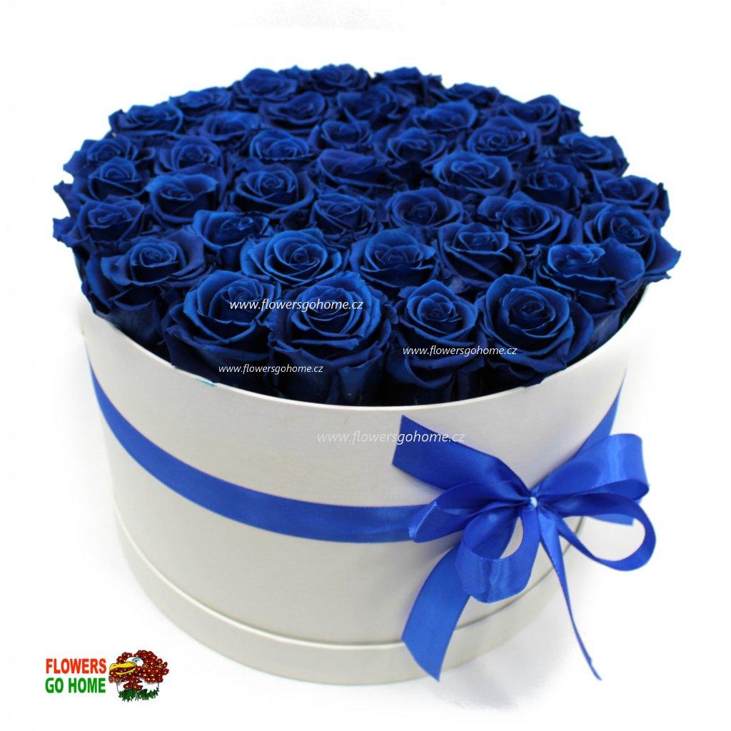 Stabilizovaná růže 40 ks Royale Blue logo