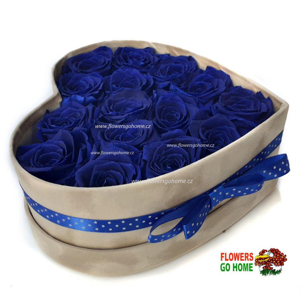 Stabilizovaná růže box modrý