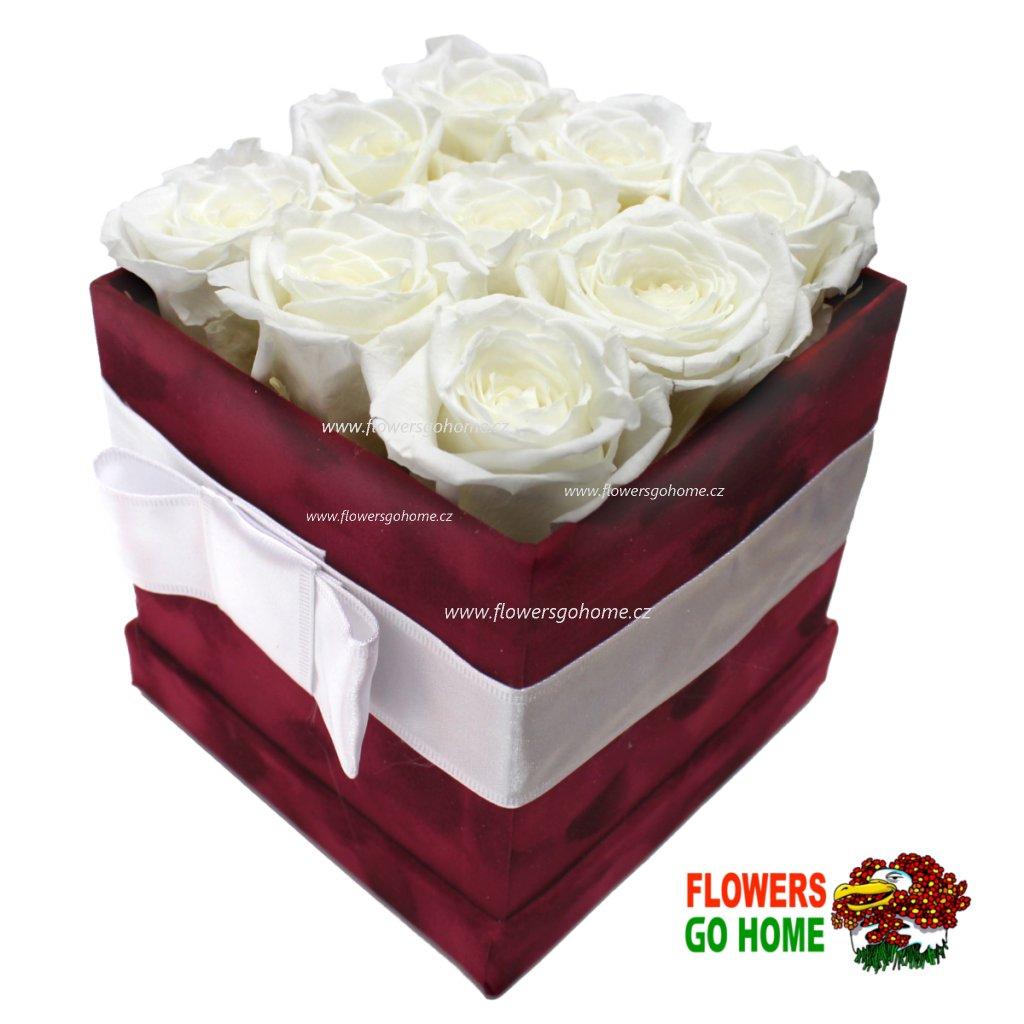 Stabilizovaná růže bílá