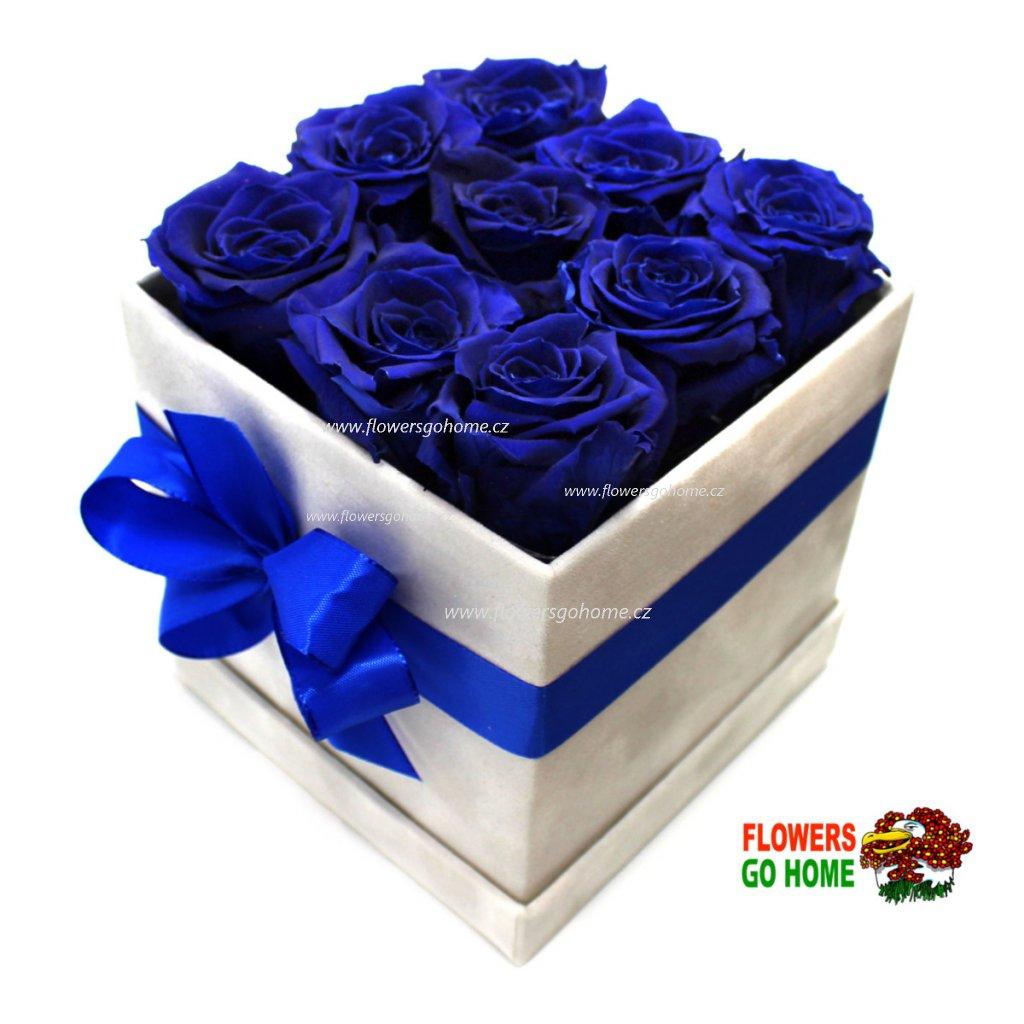 Stabilizovaná růže modrá hranatý box