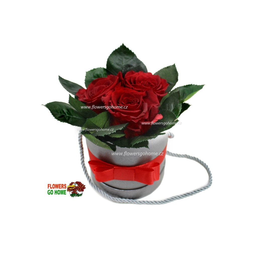 Stabilizovaná růže 3 ks