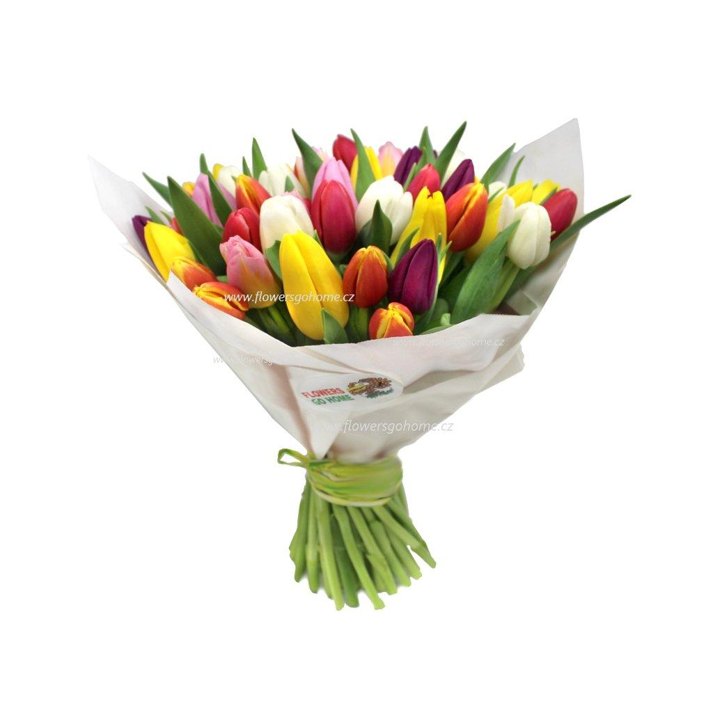 Tulipány pro maminku