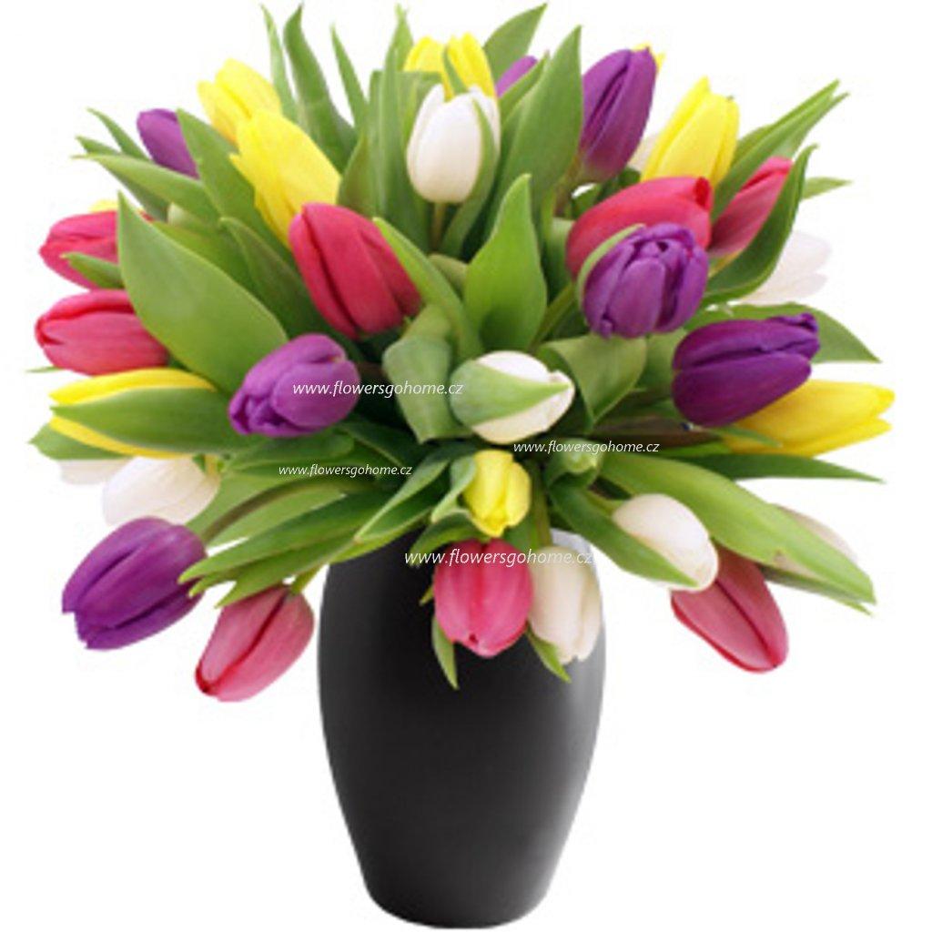 15 tulipánů