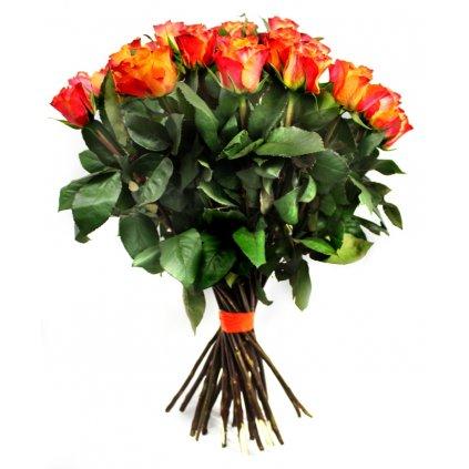 Oranžové růže