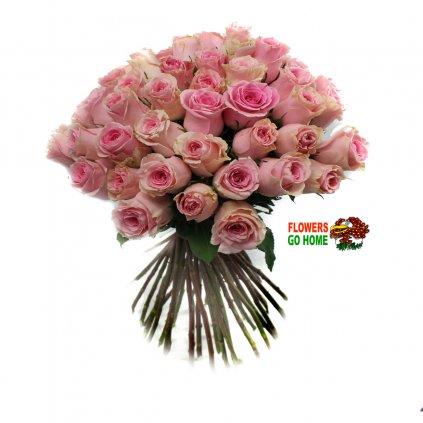 Růžové růže logo