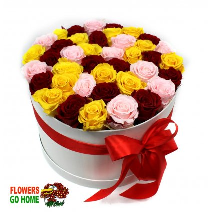Stabilizovaná růže 40 ks