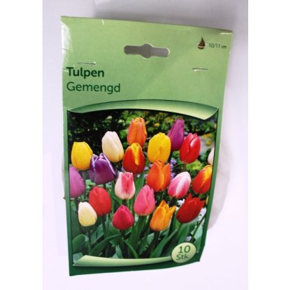 Cibule tulipánů MIX