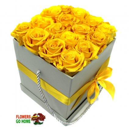 Stabilizovaná růže žlutá