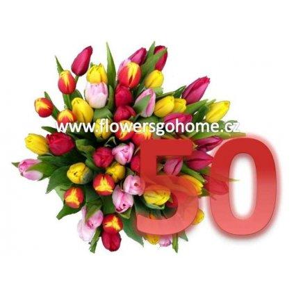 50 tulipánů