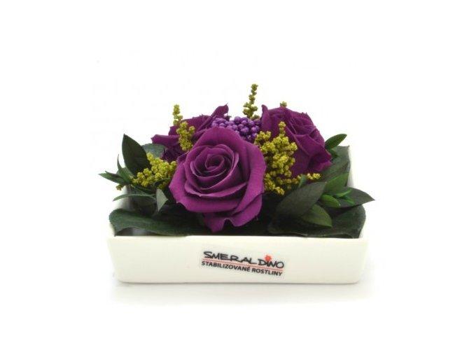 Stabilizovaná růže fialová