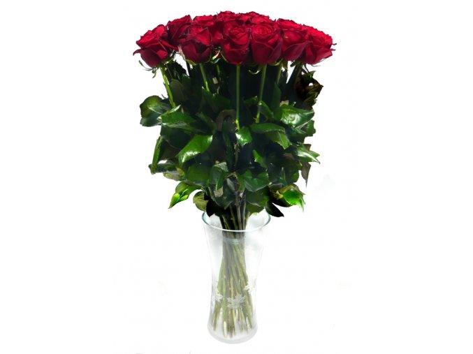 Dlouhé červené růže