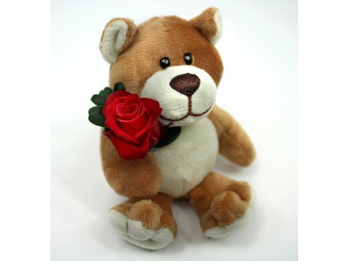 Medvídek s růžičkou