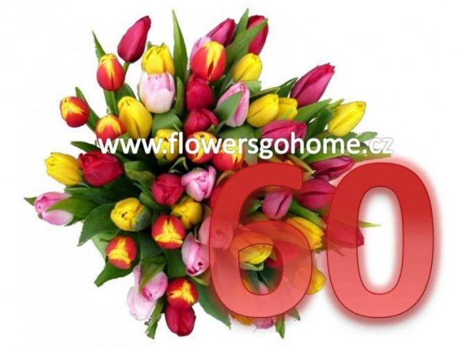 60 tulipánů