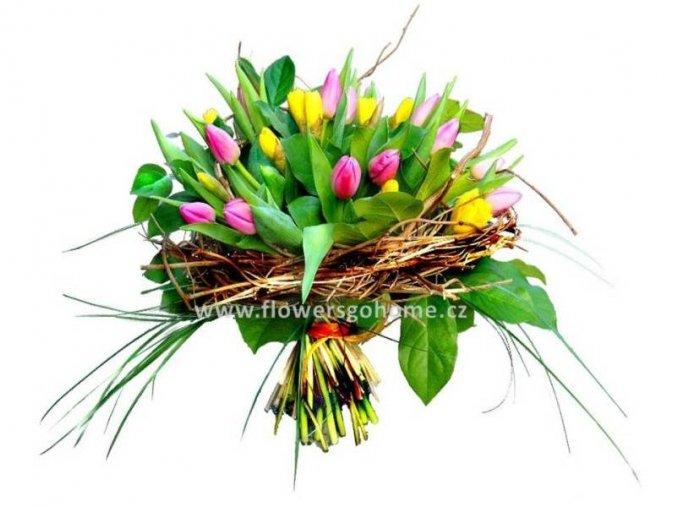 Květina s narcisy