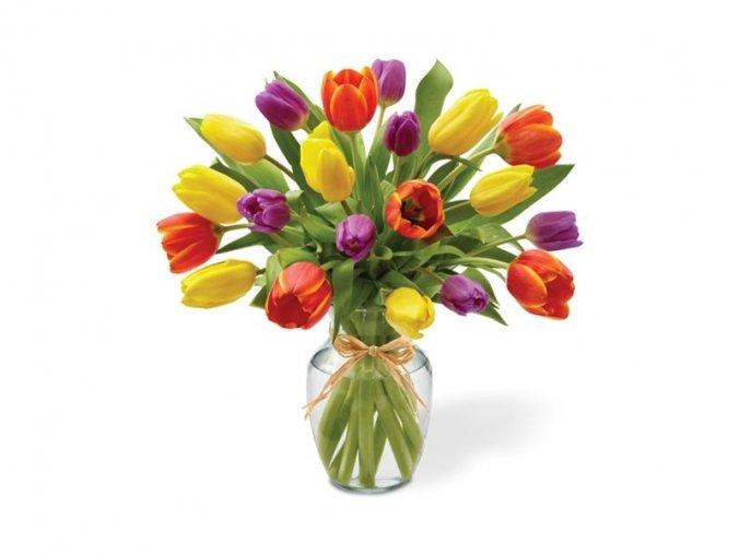 Kytice Tulipánů 15 ks a více...