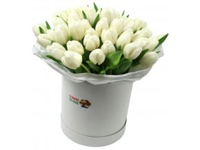 Tulipány v krabici