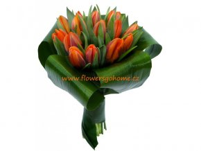Tulipány Prinses Irene - žezlo