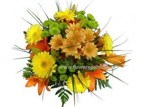 Veselá lilie