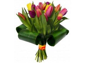 Tulipánové žezlo (Velikost 15 ks)