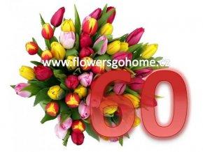 Kytice 60 tulipánů