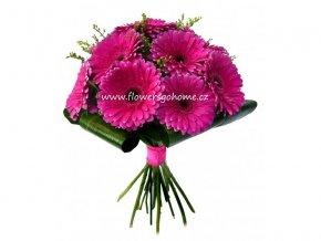 Růžové gerbery