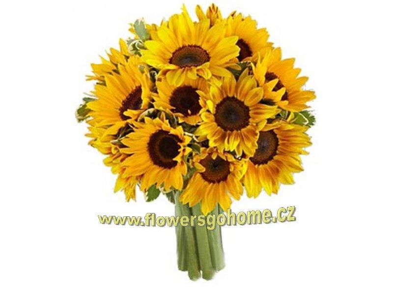 slunečnice Velikost: 25 ks